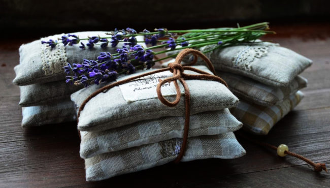 Datovania semien korálky